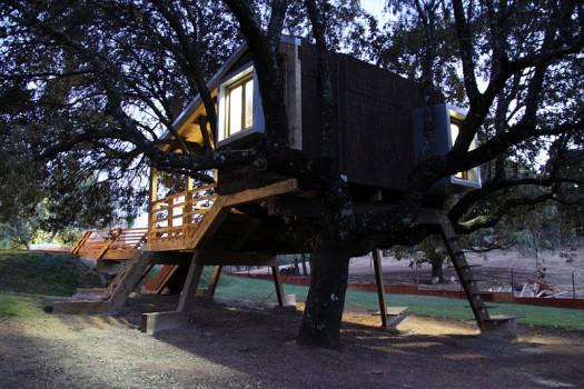 Casa en el Arbol Enraizada by Urbanarbolismo