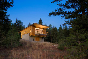 Pine Forest Cabin by Balance Associates Architects