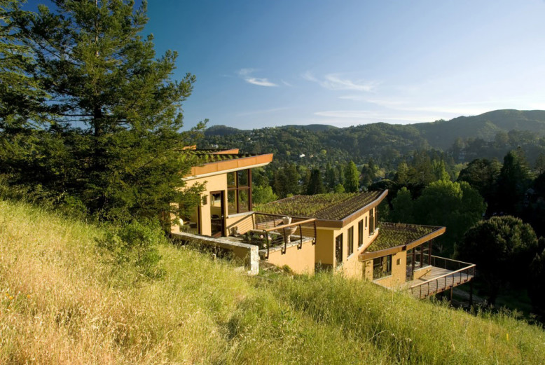 Mill Valley Hillside project