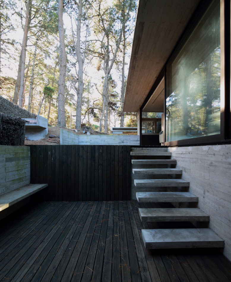 Pedroso House by Luciano Kruk and María Victoria Besonías