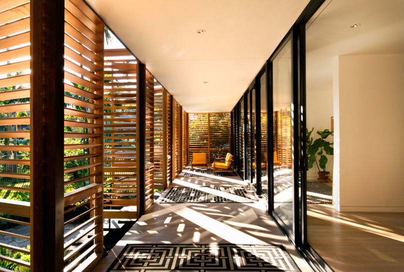 Tropical refuge in downtown Miami by Brillhart Architecture-05