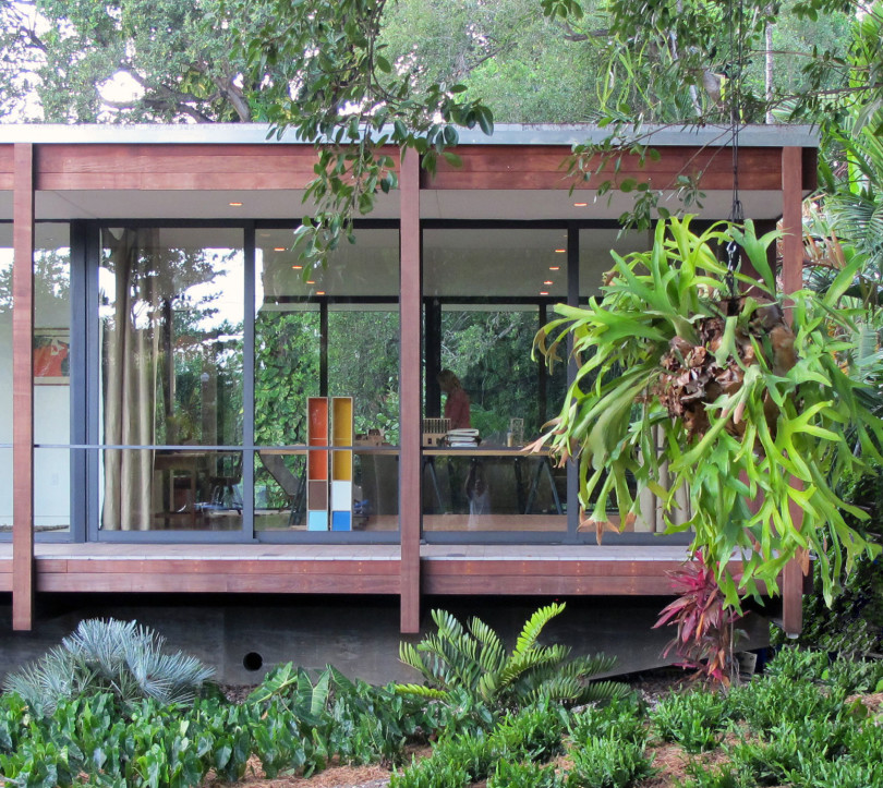 Tropical refuge in downtown Miami by Brillhart Architecture-10